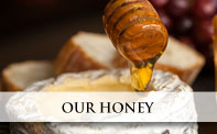 Honey from Greece - Fine Greek Honey - Our_Honey